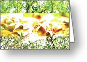 Robert C. Glover Jr Greeting Cards - Nature Scape 011 Greeting Card by Robert Glover