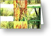 Robert C. Glover Jr Greeting Cards - Nature Scape 013 Greeting Card by Robert Glover