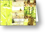 Indiana Autumn Greeting Cards - Nature Scape 015 Greeting Card by Robert Glover