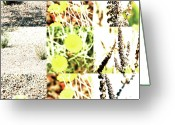 Robert C. Glover Jr Greeting Cards - Nature Scape 020 Greeting Card by Robert Glover