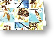 Robert C. Glover Jr Greeting Cards - Nature Scape 021 Greeting Card by Robert Glover