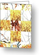 Robert C. Glover Jr Greeting Cards - Nature Scape Triptych 1 Greeting Card by Robert Glover