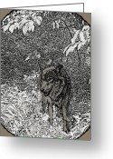 Wolves Drawings Greeting Cards - Nature Walk Wolf Greeting Card by Debra     Vatalaro