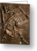 Most Photo Greeting Cards - Neanderthal Skeleton, Kebara Cave, Israel Greeting Card by Javier Truebamsf
