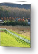 Autumn In The Country Photo Greeting Cards - Near Lake Lure NC Greeting Card by Kathy Budd