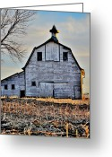 Christine Belt Greeting Cards - Nebraska Aviance Greeting Card by Christine Belt