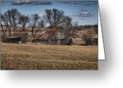 Cornfield Greeting Cards - Nebraska Farm Greeting Card by Tim Perry