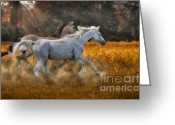 Buckskin Horse Greeting Cards - Neck And Neck Greeting Card by Susan Candelario