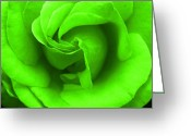 Robyn Stacey Photo Greeting Cards - Neon Green Rose Greeting Card by Robyn Stacey