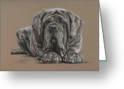 Animal Portrait Pastels Greeting Cards - Neopolitan Mastiff Greeting Card by Terry Kirkland Cook