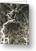 Neurosurgeon Greeting Cards - Neurons Firing Greeting Card by Christopher Kulfan