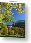 Rudi Prott Greeting Cards - Neuschwanstein castle bavaria in autumn Greeting Card by Rudi Prott