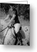 Side Saddle Greeting Cards - Never Look Down Greeting Card by East Coast Barrier Islands Betsy A Cutler