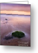 Pink Dawn Greeting Cards - New Day Greeting Card by Martin Williams