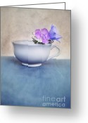 Stillife Greeting Cards - New Life For An Old Coffee Cup Greeting Card by Priska Wettstein