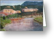 Chama River Greeting Cards - New Mexico Colors Greeting Card by Stana Stoker