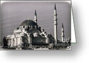 New District Istanbul Greeting Cards - New Mosque Greeting Card by Joan Carroll