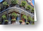 Hanging Baskets Greeting Cards - New Orleans Balcony Greeting Card by Carol Groenen