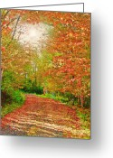 Autumn Roads Greeting Cards - New York Autumn Trail 1 Greeting Card by Steve Ohlsen