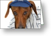 Vet Photo Greeting Cards - New York Yankee Hotdog Greeting Card by Susan Candelario