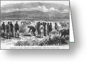 New Britain Greeting Cards - New Zealand Wars, 1865 Greeting Card by Granger