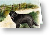 Split Rail Fence Painting Greeting Cards - Newfie  Greeting Card by Nancy Patterson