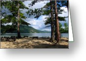 Nh Greeting Cards - Newfound Lake in NH Greeting Card by Janice Paige Chow