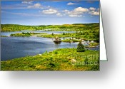 Hillside Greeting Cards - Newfoundland landscape Greeting Card by Elena Elisseeva