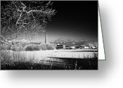 Precaution Greeting Cards - Newtownabbey borough council hq mossley mill and mossley lake frozen on a cold snowy winters day Greeting Card by Joe Fox