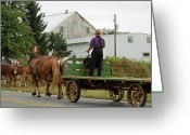 Amish Farms Greeting Cards - Next Wagons Ready Greeting Card by Joyce Huhra