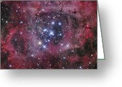 H Ii Regions Greeting Cards - Ngc 2244, The Open Cluster Greeting Card by Robert Gendler