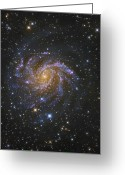 Starfield Greeting Cards - Ngc 6946, Also Known As The Fireworks Greeting Card by Robert Gendler