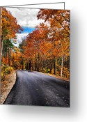Nh Greeting Cards - NH Autumn Road 1 Greeting Card by Edward Myers