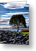 Nh Greeting Cards - NH Seacoast in Autumn  Greeting Card by Edward Myers