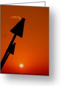 Tropical Photographs Greeting Cards - Night Light Greeting Card by Athala Carole Bruckner