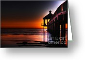 Beautiful Image Greeting Cards - Nightshade Greeting Card by Pixel Perfect by Michael Moore