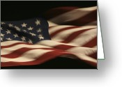 United States Flag Greeting Cards - Nighttime Glory Greeting Card by Mike Coverdale