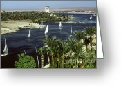 Nile River Greeting Cards - Nile And Oberoi Hotel, Egypt Greeting Card by Bernard Wolff