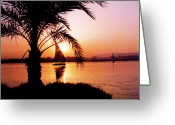Nile River Greeting Cards - Nile Sunset Greeting Card by Kurt Van Wagner