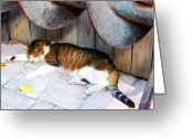 Slumber Greeting Cards - Nine Lives Greeting Card by Debbi Granruth