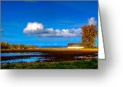 Olympia Greeting Cards - Nisqually Wildlife Refuge P35 Greeting Card by David Patterson