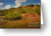 Oklahoma Landscape Greeting Cards - No No Greeting Card by Fred Lassmann