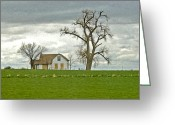 Summer On The Farm Greeting Cards - No One Is Home. Greeting Card by James Steele