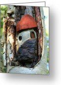 Trees Sculpture Greeting Cards - No Place like Gnome Home IV Greeting Card by Eric Knowlton