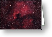 Nebula Greeting Cards - North American Nebula (ngc 7000) Greeting Card by Cameran Ashraf