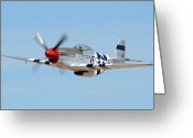 P-51 Mustang Greeting Cards - North American P-51D Mustang NL5441V Spam Can Valle Arizona June 25 2011 1 Greeting Card by Brian Lockett