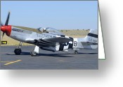 Airplane Greeting Cards - North American P-51D Mustang NL5441V Spam Can Valle Arizona June 25 2011 3 Greeting Card by Brian Lockett