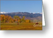 Rocky Mountains Greeting Cards Greeting Cards - North Boulder County Colorado Front Range Panorama With Horses Greeting Card by James Bo Insogna
