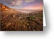 San Diego California Greeting Cards - North San Diego Beach Greeting Card by Larry Marshall
