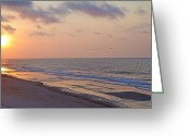 Sea Birds Greeting Cards - North Topsail Beach Glory Greeting Card by East Coast Barrier Islands Betsy A Cutler